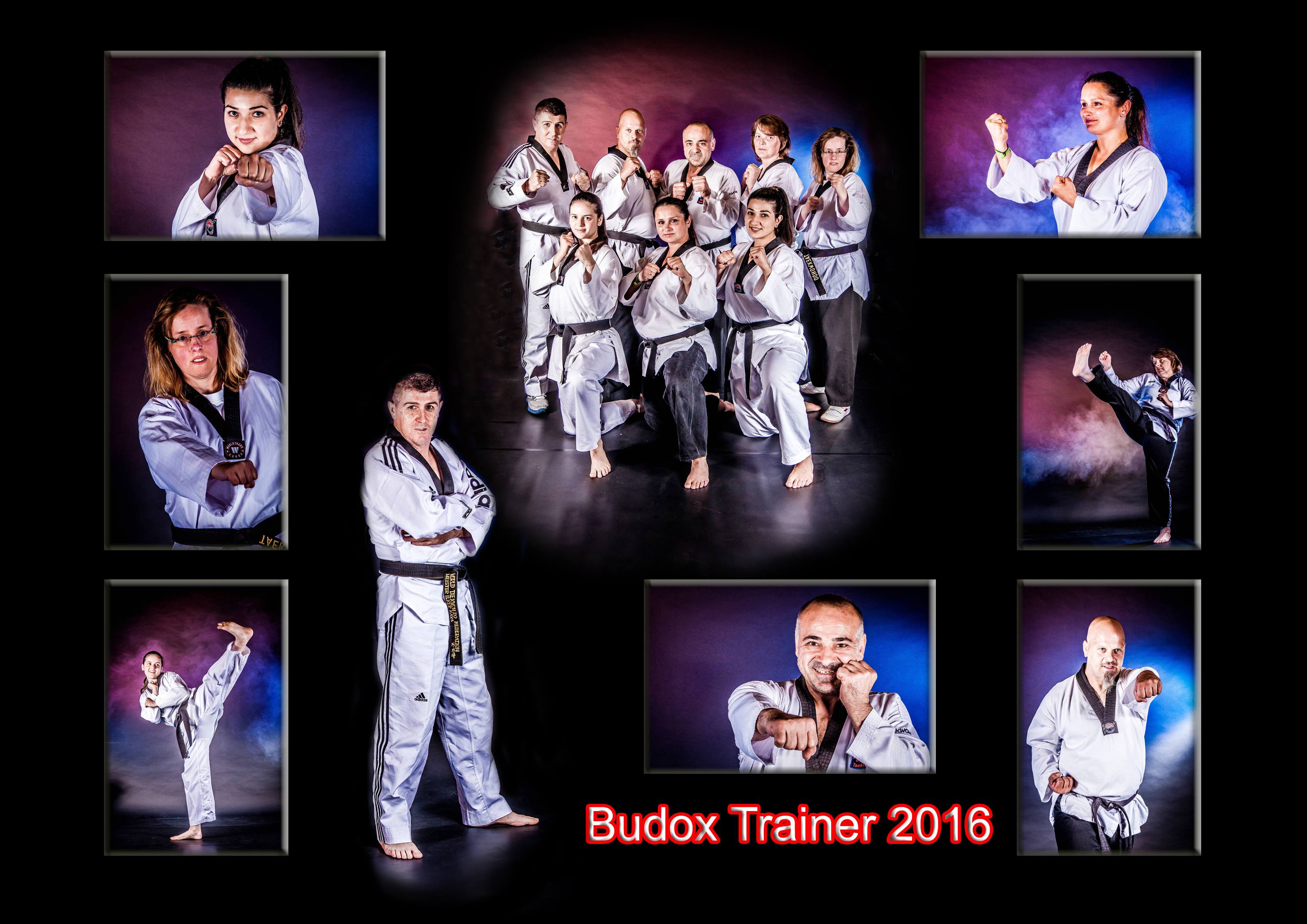 Budox Trainer-Collage